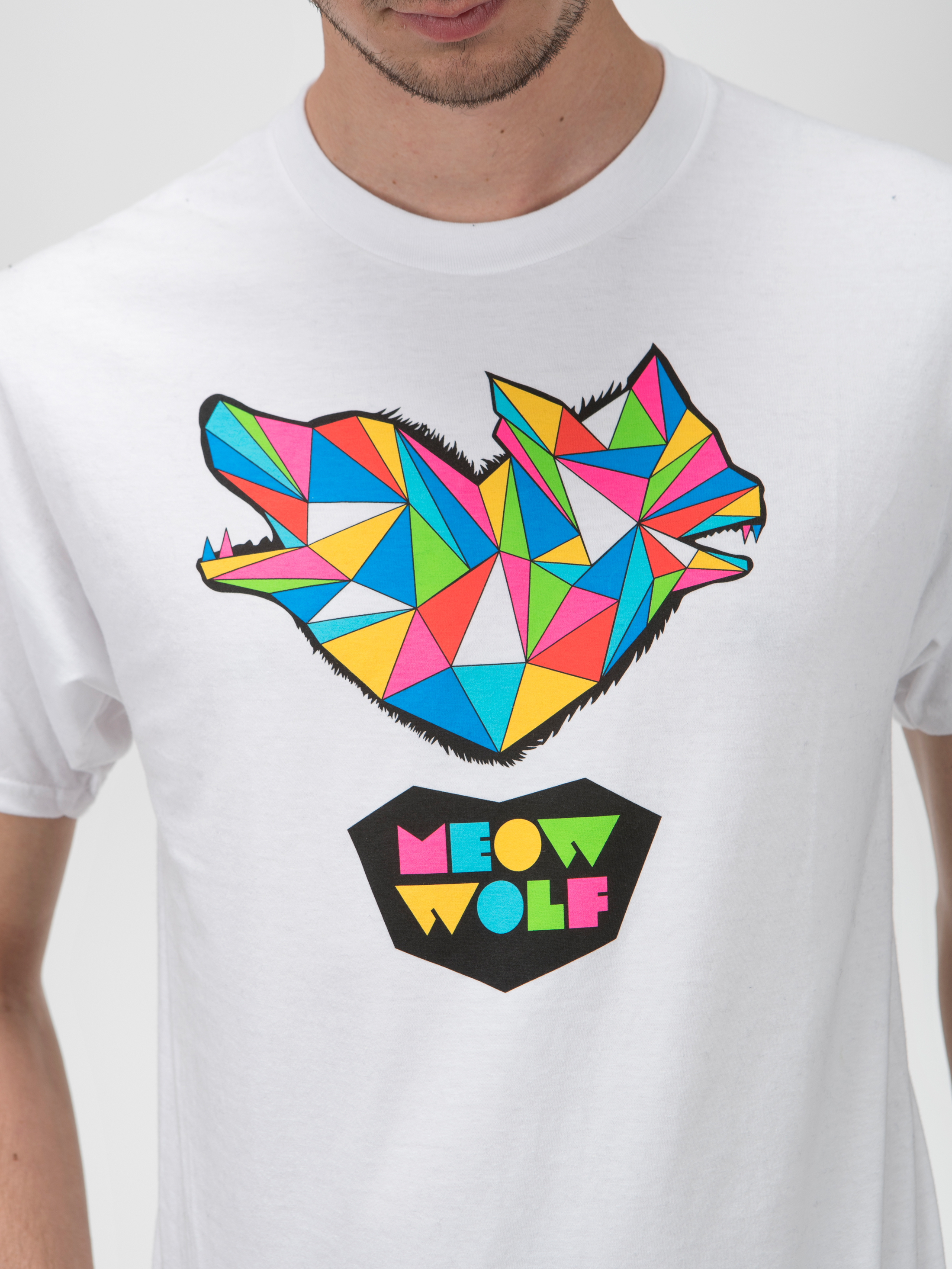 Meow Wolf Wilderness T Adult
