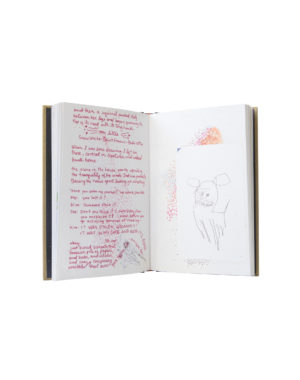Piper Diary Book Meow Wolf