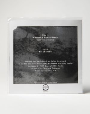 Dylan_Blanchard_Arroyo_Hondo_Vinyl_Meow_Wolf