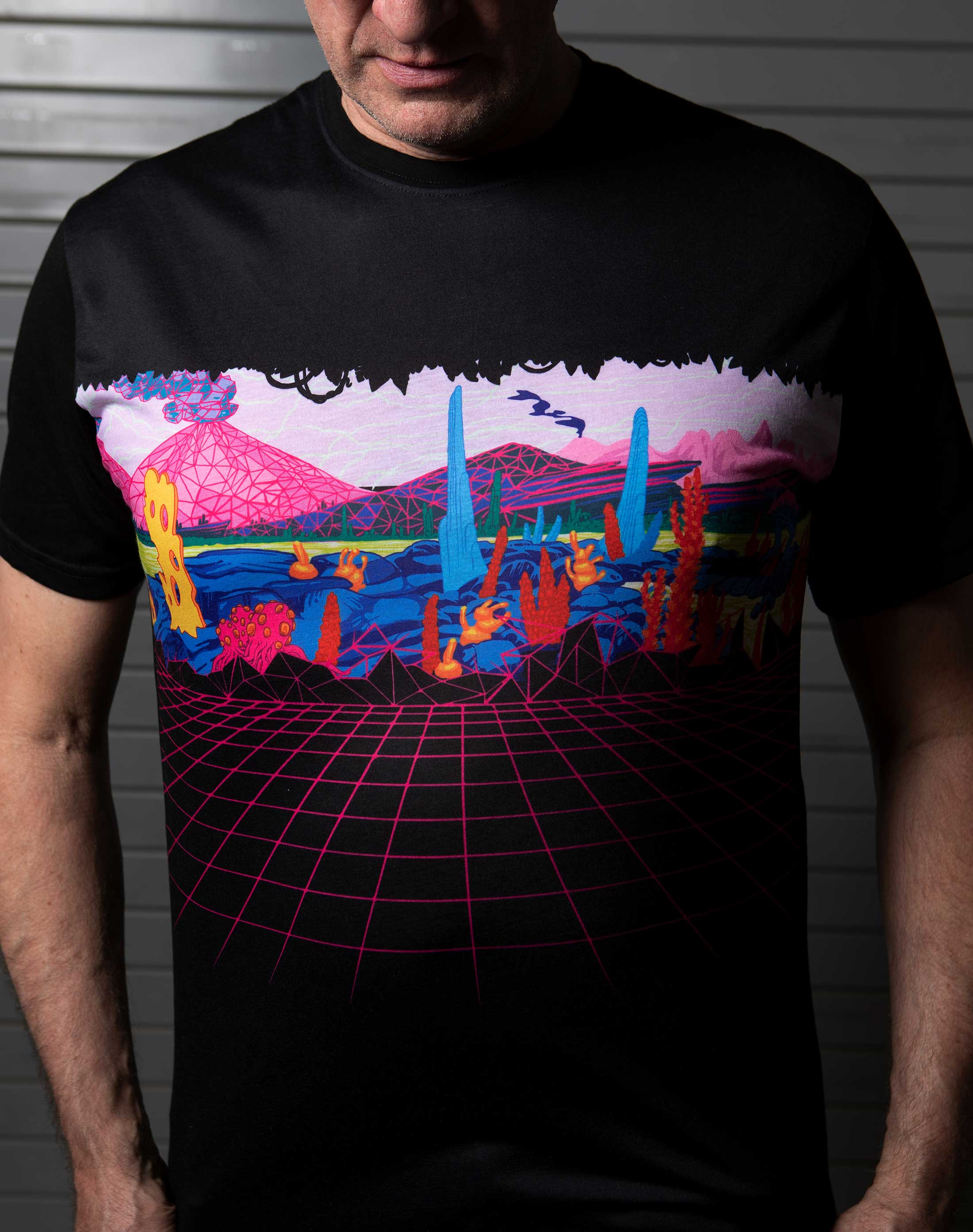 KLS_Gridscape_Tee_Meow_Wolf